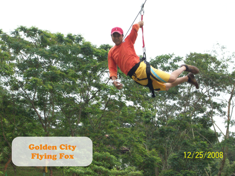 flying fox edited