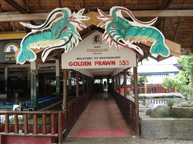 golden-prawn-02